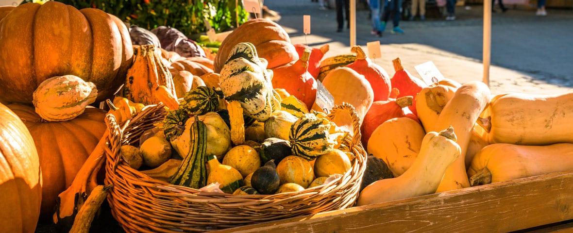 Kürbisse am Bauernmarkt: Klimafreundlich einkaufen